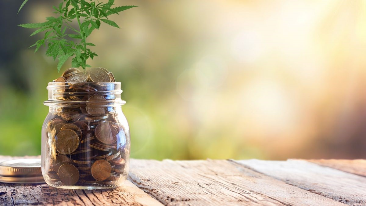 INVESTING AND THE CROWD – CANNABIS CROWD THAT IS…!